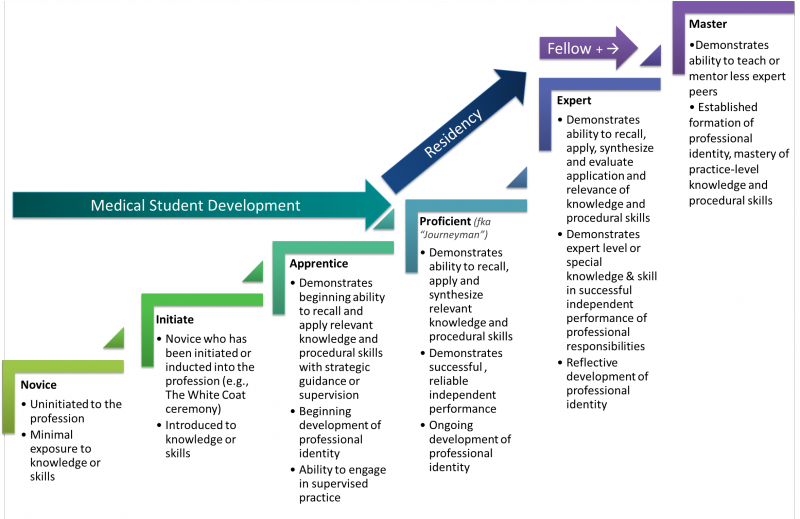 from novice to master faculty instructional development